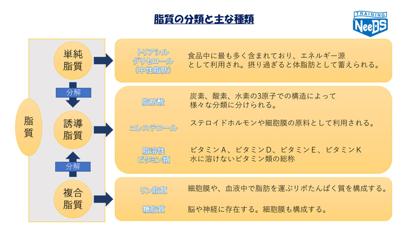 脂質の種類 | ブログ | 神戸六甲...